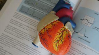 Miocardite esami