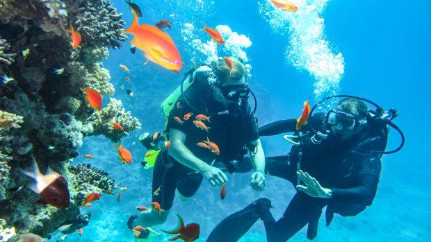 Immersione subacquea: come prepararsi e quali controlli fare prima