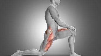 Ileopsoas, il muscolo della corsa (e dell'anca). Lo stretching? Fondamentale