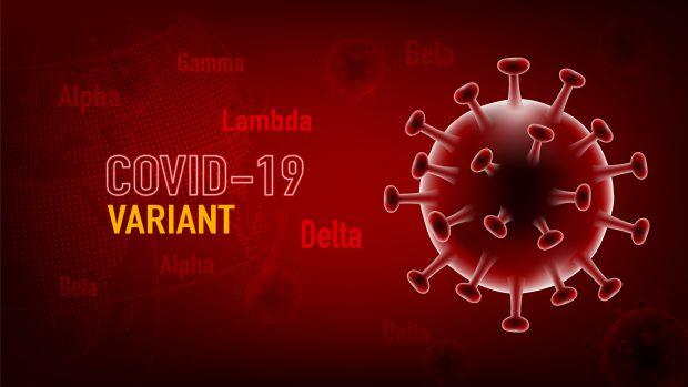 """Variante Delta, il virologo Clementi: """"Ecco perché è solo più contagiosa e non più letale"""""""