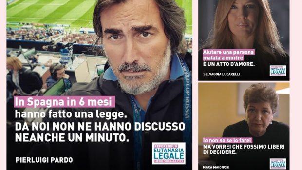 Pardo Lucarelli Maionchi